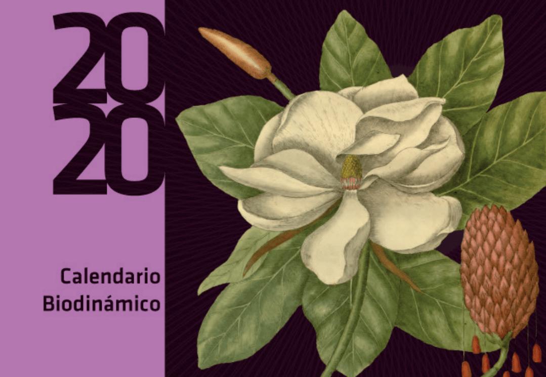 calendario biodinamico 2020
