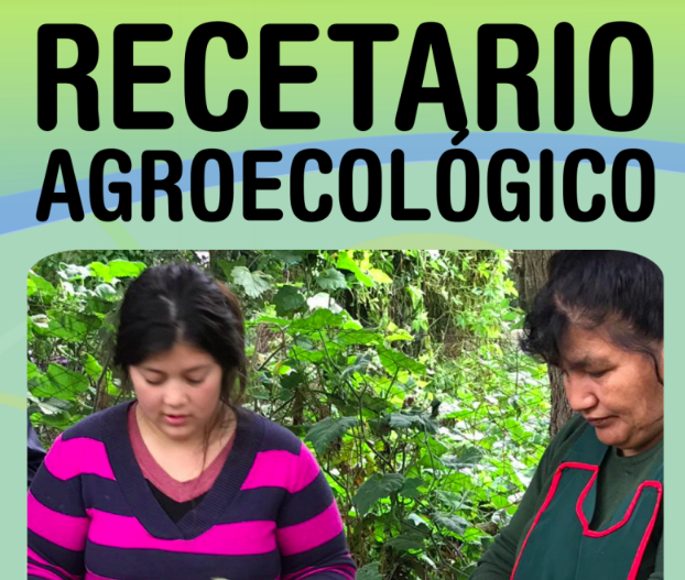 Recetarioagroecologico2020